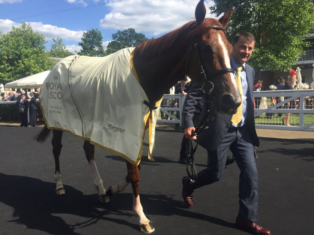 stradivarius goodwood winner